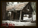 Lookout Cabin (Prineville, OR)