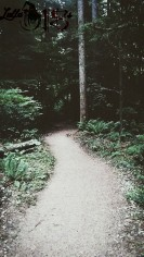Lost Path (OR)
