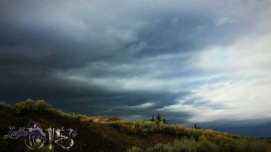 Desert Storm (OR)